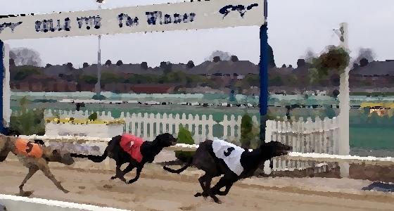 dog racing 2